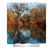 Elm By The Connecticut River In Autumn Shower Curtain