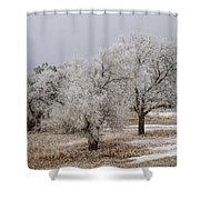 Elm Frosting Shower Curtain