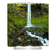 Elowah's Elegance Shower Curtain by Chad Dutson
