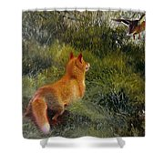 Eluding The Fox Shower Curtain