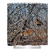 Elusive Woodcock's Woody Environment Shower Curtain