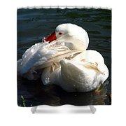 Embden Goose 4 Shower Curtain