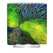 Embodied Energy Shower Curtain