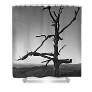 Embrace With Open Arms Shower Curtain