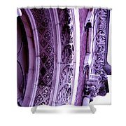 Embracing History Shower Curtain