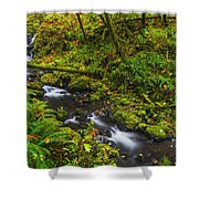 Emerald Falls And Creek In Autumn  Shower Curtain