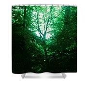 Emerald Glade Shower Curtain