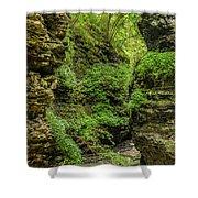 Emerald Gorge Shower Curtain