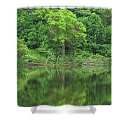 Emerald Green Reflections Shower Curtain