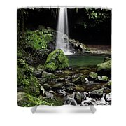 Emerald Pool Shower Curtain