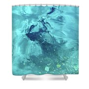 Water Horse Shower Curtain