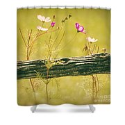 Emerging Beauties - Y11a Shower Curtain