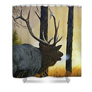 Emerging Monarch - Elk Shower Curtain