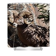 Emerging Ram Shower Curtain