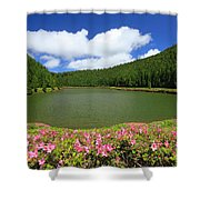 Empadadas Lakes Shower Curtain