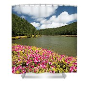 Empadadas Lakes II Shower Curtain