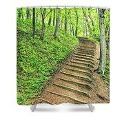 Empire Bluffs Trail Steps In Michigan Shower Curtain