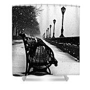 Empty Benches In The Snow Shower Curtain