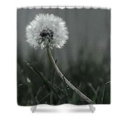 Empty Promises Endless Wishes  Shower Curtain