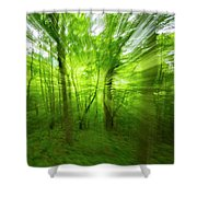 Enchanted Forest 1 Shower Curtain