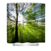 Enchanted Forest 5 Shower Curtain