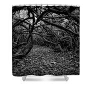 Enchanted Hau Forest Shower Curtain