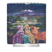 Enchanted Lights Shower Curtain