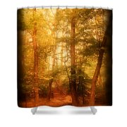 Enchanted Path 2 - Allaire State Park Shower Curtain