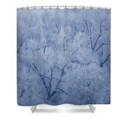 Enchanted Woodland Shower Curtain