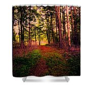 Enchanted Woods Shower Curtain
