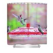 Encounter At The Feeder Shower Curtain