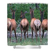 End All Be All Shower Curtain