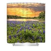 End Of A Bluebonnet Day Shower Curtain