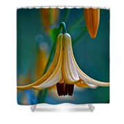 End Of June Shower Curtain
