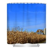 End Of Season Corn 2015 Shower Curtain