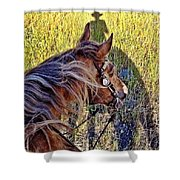 End Of Spring Shower Curtain