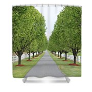 Endless  Country Road Shower Curtain