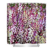 Endless Field Of Flowers Shower Curtain