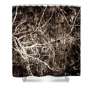 Endless Shower Curtain by Gaby Swanson