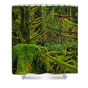 Endless Green Shower Curtain