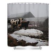 Endurance Shower Curtain