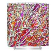 Energetic Abstract Shower Curtain