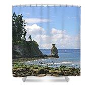 English Bay Shower Curtain