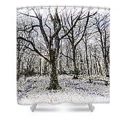 English Forest Snow Art Shower Curtain