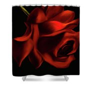 English  Rose Shower Curtain