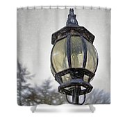English Victorian Style Park Lamp Shower Curtain
