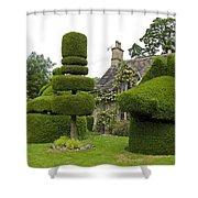 English Yew Topiary Shower Curtain