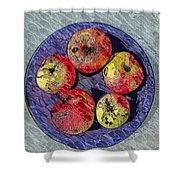 Engraved Wormy Apples Shower Curtain