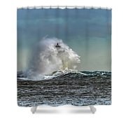 Engulfed Shower Curtain