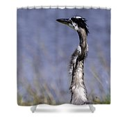 Enjoying The View Shower Curtain